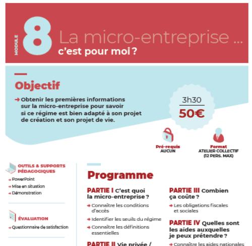 Module n°8 : La micro-entreprise…C'est quoi pour moi ?