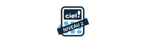Tenir sa comptabilité informatique sur CIEL - niveau 2